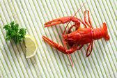 小龙虾 — 图库照片