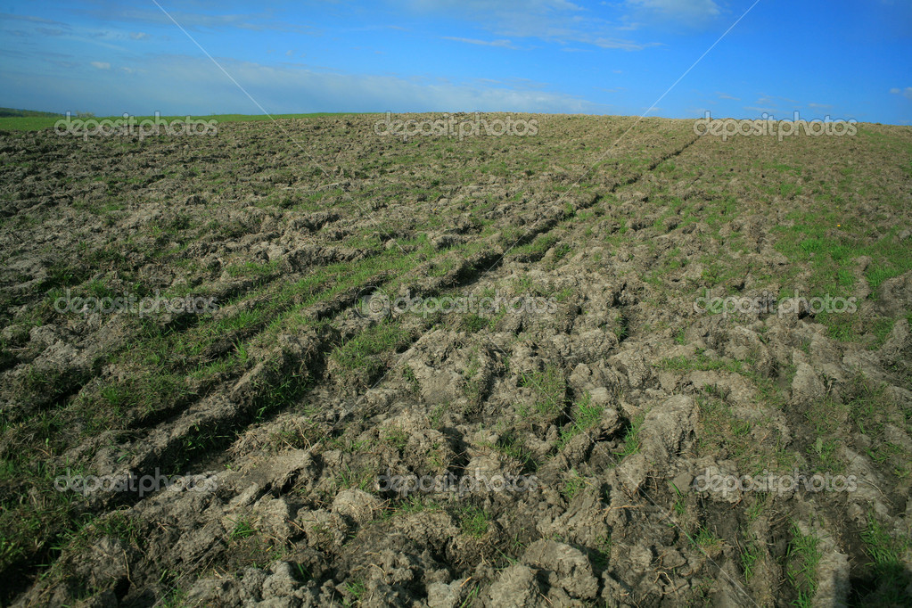 Agricultural field with some grass on it — Stock Photo #8574536