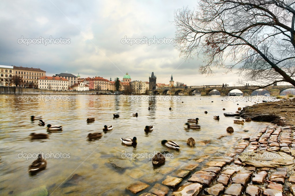 View of Charles bridge and river Vltava — Stock Photo #8575485