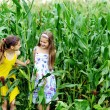 An image of two little girls in the green cornfield — Stock Photo #8605321