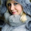 Girl in grey fur hat — Stock Photo #8628800