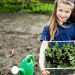 Girl with seedlings - Stock Photo