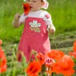 Child amongst red flowers — Stock Photo