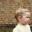 Stock Photo: Girl near wall