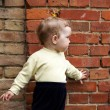 Little girl near brick wall — Stock Photo #8665423