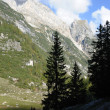Rocky mountains and green forest — Foto de Stock