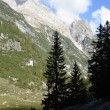Rocky mountains and green forest — Stok fotoğraf