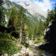 Great italian mountains and a stream — Stock Photo #9362577