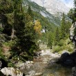 Great italian mountains and a stream - Stock Photo