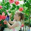 Little girl watering flowers in a greenhouse — Stock Photo