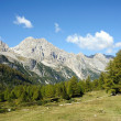 bella valle verde in montagna — Foto Stock