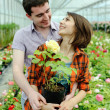 A young couple with a flower pot - Stock Photo
