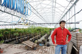 Young worker in a greenhouse — Stock Photo