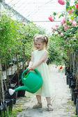 Nice girl watering flowers — Stock Photo