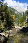 Great italian mountains and a stream — Stock Photo