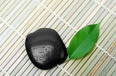 Black stone for spa and green leaf — Stock Photo