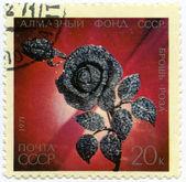 "Brooch ""Rose"" — Stock Photo"
