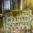 Stock Photo: Thrown Jewish cemetery
