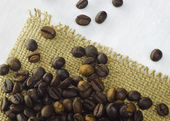 Grains of the fresh coffee — Stock Photo