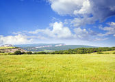 Big green meadow in mountain. — Stock Photo