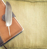 Elegant feather over a notebook — Stock Photo