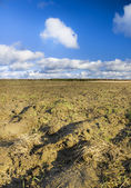 Plough plowed brown clay soil field — Stock Photo