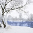 Stock Photo: Frozen river