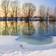 Frozen river — Foto de Stock