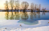 Frozen river — Stock Photo