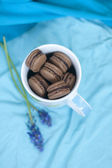 French macarons (macaron) in the cup and blue flowers — Stock Photo