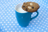 Oatmeal cookie on the cup of milk — Stock Photo