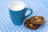 Breakfast with oatmeal cookies and cup of milk — Stock Photo