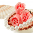 Royalty-Free Stock Photo: Sea shell with pearls and a rose