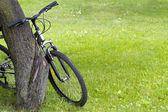Bicycle — Photo