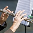 Flutist - Stock Photo