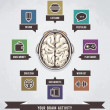 Brain activity infographics illustration - Imagens vectoriais em stock