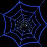 Black spider on blue web — Stock Photo