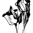 Vector de stock : Tulip