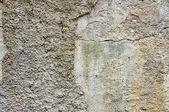 コンクリート表面 — ストック写真