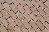 Cement tegels pad — Stockfoto