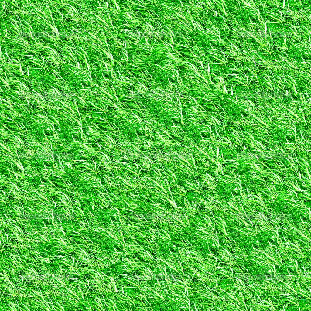 Beautiful green grass seamless texture  Foto Stock #8911303