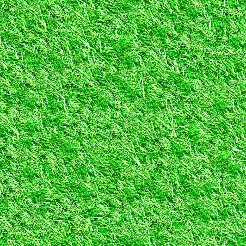 Beautiful green grass seamless texture  Photo #8911303