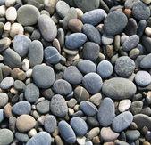 Guijarros grises en la playa como fondo — Foto de Stock