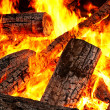 Bonfire — Stock Photo #7981793