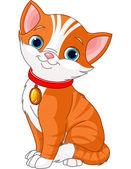 Süße katze — Stockvektor