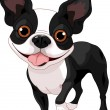 Royalty-Free Stock Vector Image: Boston Terrier
