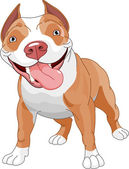 Pitbull dog — Stock Vector