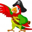Pirate  Parrot — Stock Vector