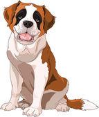 St. Bernard Dog — Stock Vector