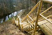 Schody drewniane w parku narodowym — Zdjęcie stockowe